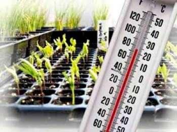 Температурный режим почвы и воздуха