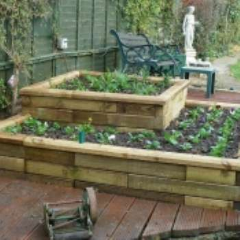 Декоративный огород – от мечты до воплощения