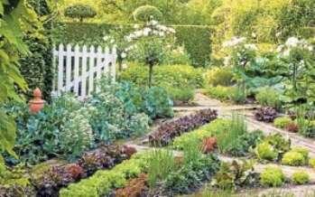 С чего начинается сад?