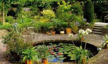 Как заселить искусственный водоем зелеными «жителями»?